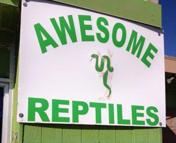 snakeStore.jpg