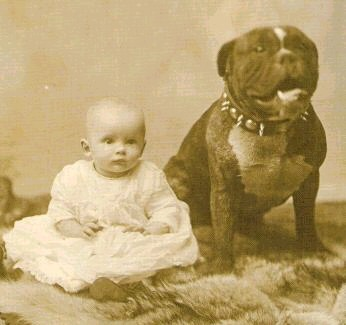 http://thecastledoctrine.net/newsImages/v10Announce/Pit_Bull_with_baby_1892.jpg